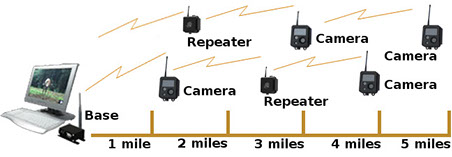 x80 repeater network
